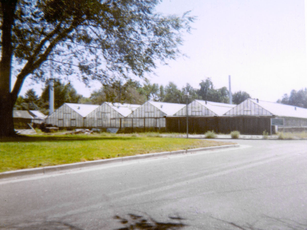 Five greenhouses now support our thriving business, seen here in an undated exterior photo